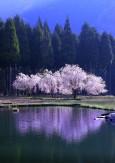 04里山の春