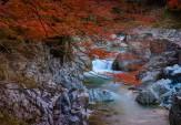 31大蛇ヶ淵の秋