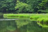9 水源の初夏