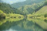 33新緑のダム湖