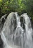 35信楽の瀑布