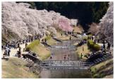 04春の休日