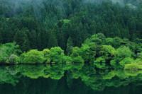 02緑・映えるダム湖